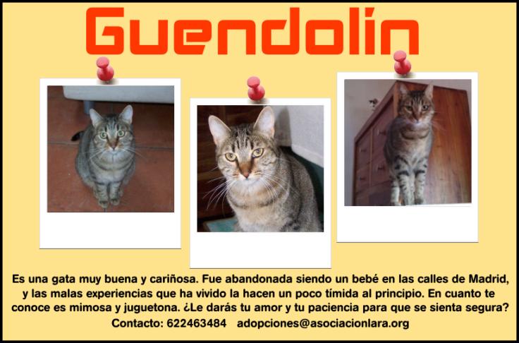 guendolin