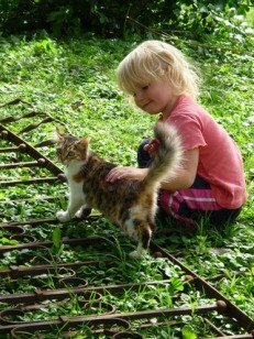 grass-girl-flower-animal-fur-kitten-969247-pxhere.com.jpg